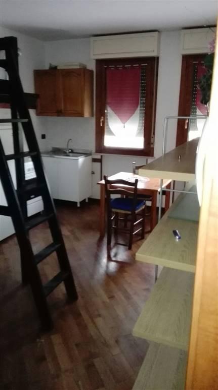 Appartamento in affitto a Suzzara, 1 locali, prezzo € 300   CambioCasa.it