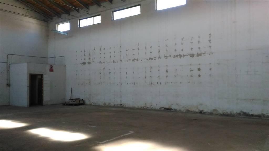 In Affitto a Porto Mantovano Attività / Licenza