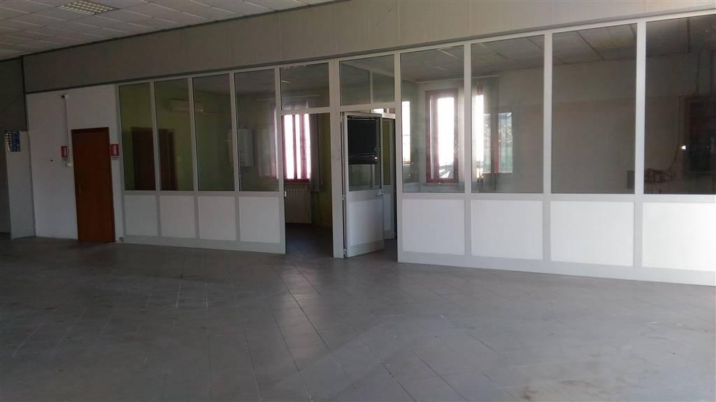 Attività / Licenza Porto Mantovano
