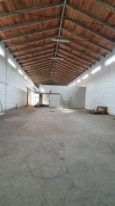 Attività / Licenza in affitto a Porto Mantovano, 2 locali, zona Zona: Sant'Antonio (capoluogo), prezzo € 700 | CambioCasa.it