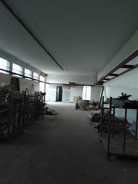 Affitto locale commerciale polesine pegognaga rif ri for Affitto locale commerciale 1000 mq roma