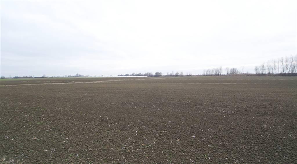 Terrain agricoles au MARCARIA
