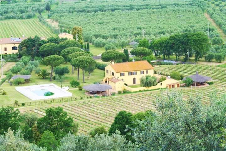 Azienda agricola in Via Bolgherese, Bolgheri, Castagneto Carducci
