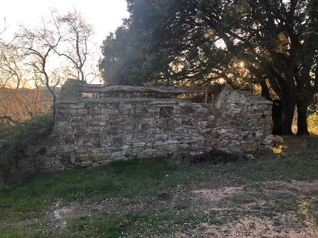 Agriturismo in vendita a Monteverdi Marittimo, 30 locali, prezzo € 280.000 | PortaleAgenzieImmobiliari.it