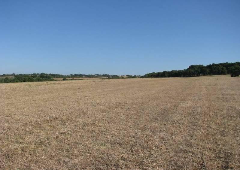 Terreno Agricolo in vendita a Ascoli Satriano, 9999 locali, Trattative riservate | CambioCasa.it