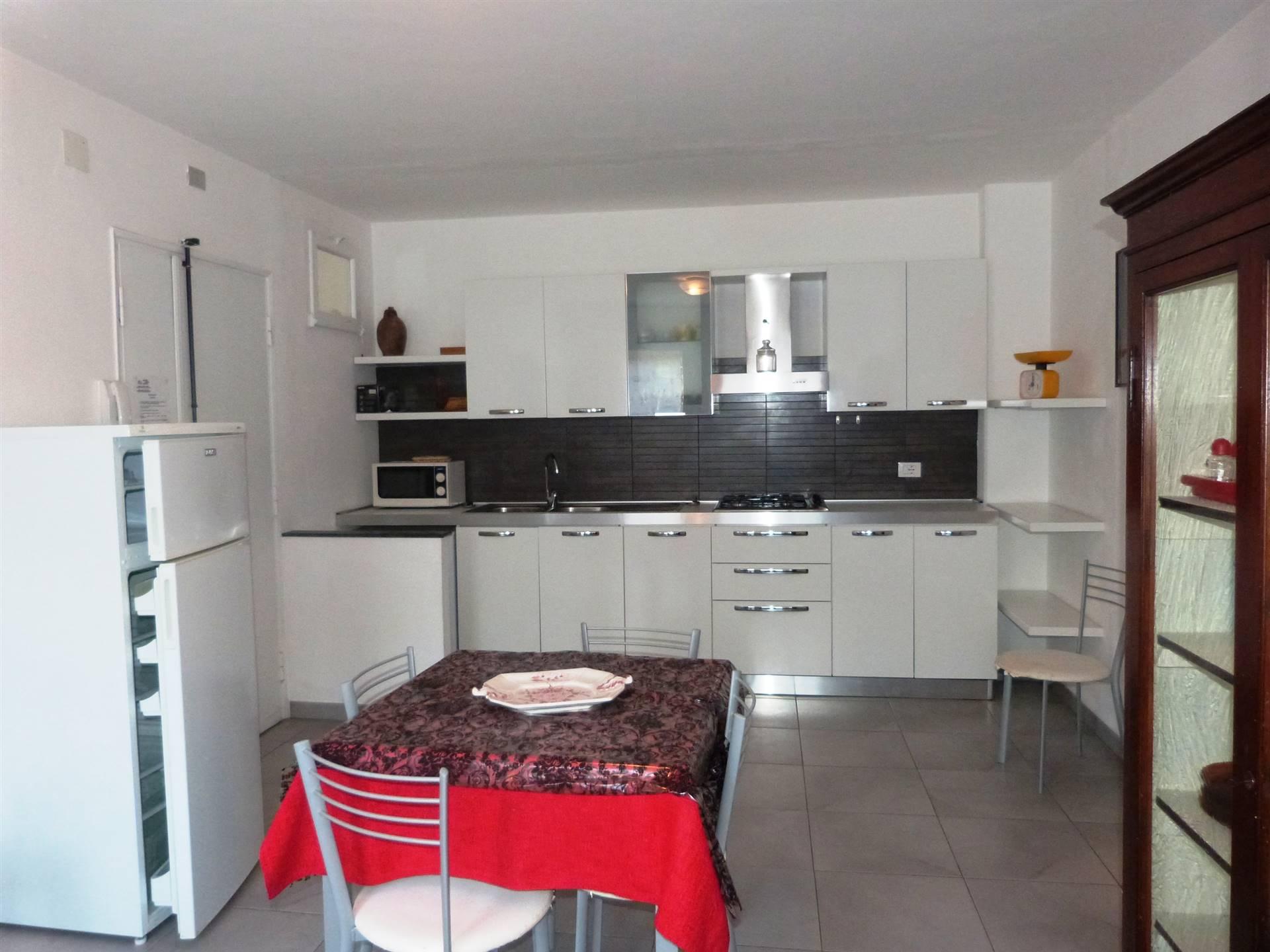 Appartamento in vendita a Castagneto Carducci, 3 locali, zona na di Castagneto Carducci, prezzo € 200.000   PortaleAgenzieImmobiliari.it