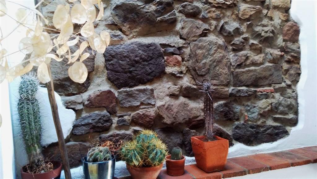 particolare muro interno