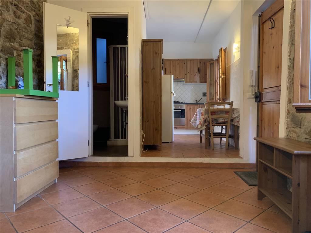 Soluzione Indipendente in affitto a Firenze, 1 locali, zona Località: CASTELLO, prezzo € 550 | CambioCasa.it