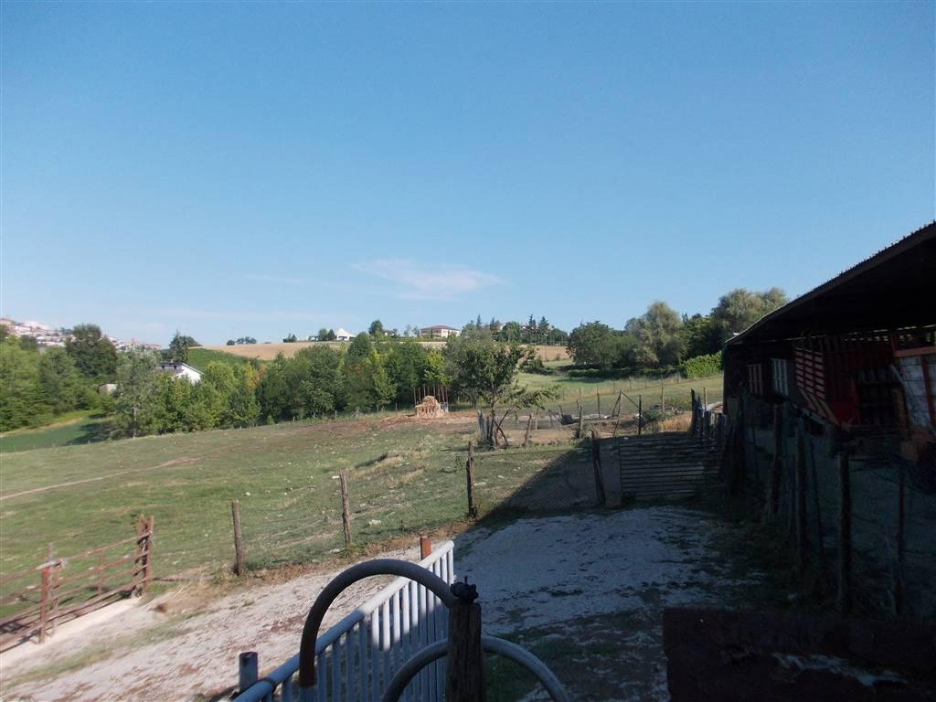 Azienda Agricola in vendita a Casale Monferrato, 1 locali, prezzo € 750.000 | PortaleAgenzieImmobiliari.it