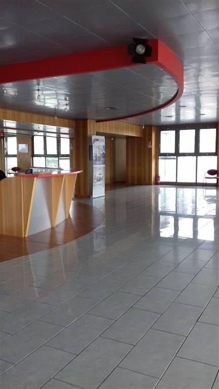 Capannone in vendita a Borgomanero, 9999 locali, prezzo € 1.750.000 | PortaleAgenzieImmobiliari.it