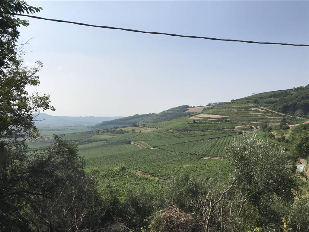 Rustico / Casale in vendita a Tregnago, 5 locali, prezzo € 55.000 | CambioCasa.it