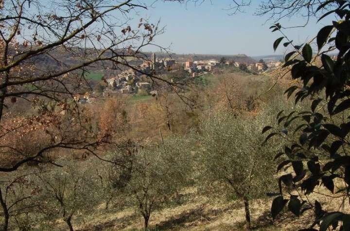 Terreno Edificabile Residenziale in Vendita a Baschi
