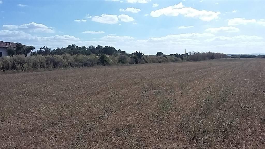 Annunci immobiliari di terreni agricoli sardegna terreno - Annunci immobiliari sorso ...
