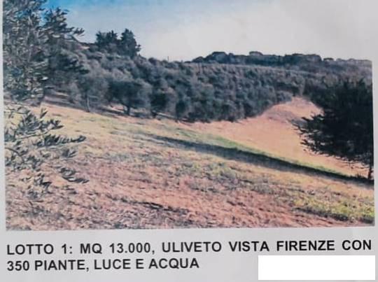 Terreno Agricolo in vendita a Lastra a Signa, 9999 locali, zona Zona: Malmantile, prezzo € 90.000 | CambioCasa.it