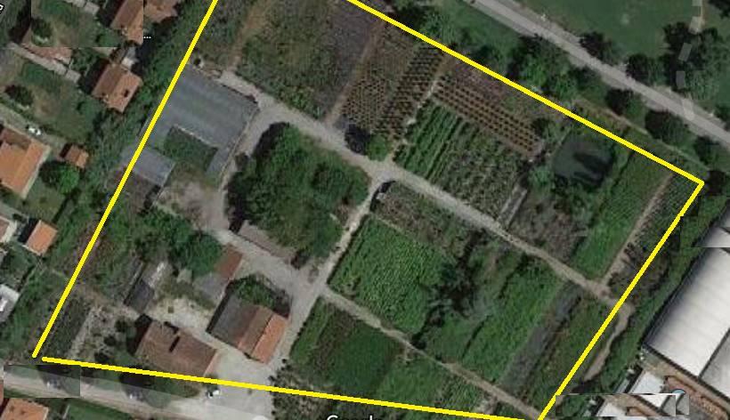Azienda Agricola in Vendita a Agliana