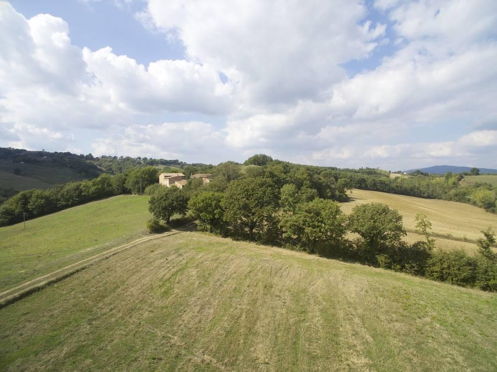Azienda agricola, San Galgano, Chiusdino, ristrutturata
