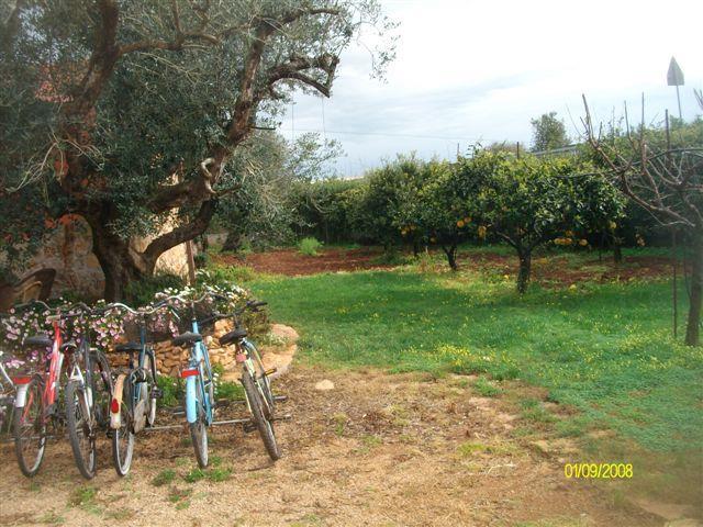 Villa in affitto a Gallipoli, 12 locali, zona Località: BAIA VERDE, prezzo € 250 | CambioCasa.it
