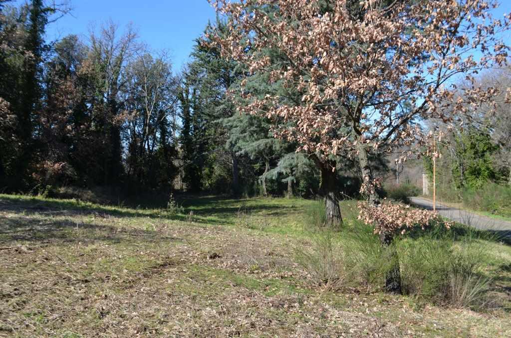 CASPERIA - zona QUERCETO a pochi minuti dal caratteristico paese, perla della Sabina, proponiamo in vendita lotto di terreno edificabile di 1310 Mq