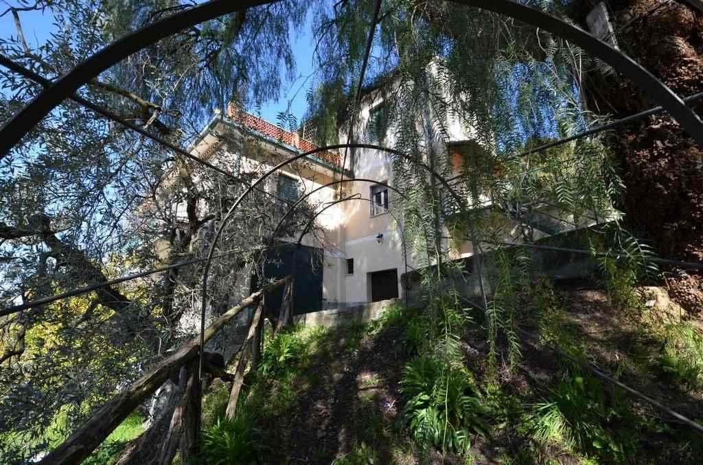MONTEBUONO - Signorile villa di ampia metratura adiacente al centro del paese circondata da un giardino curato e un terreno agricolo di 8000 mq