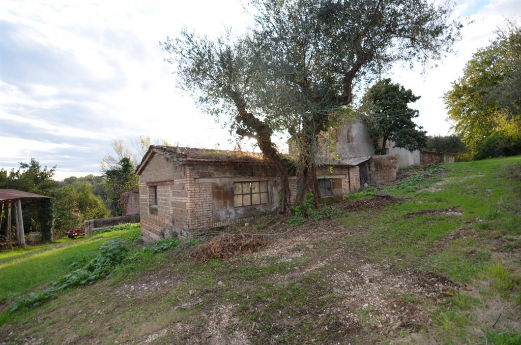 COLLEVECCHIO, Farmhouse for sale of 210 Sq. mt., Be restored, Heating Non-existent, Energetic class: G, placed at Ground on 1, composed by: 7 Rooms,