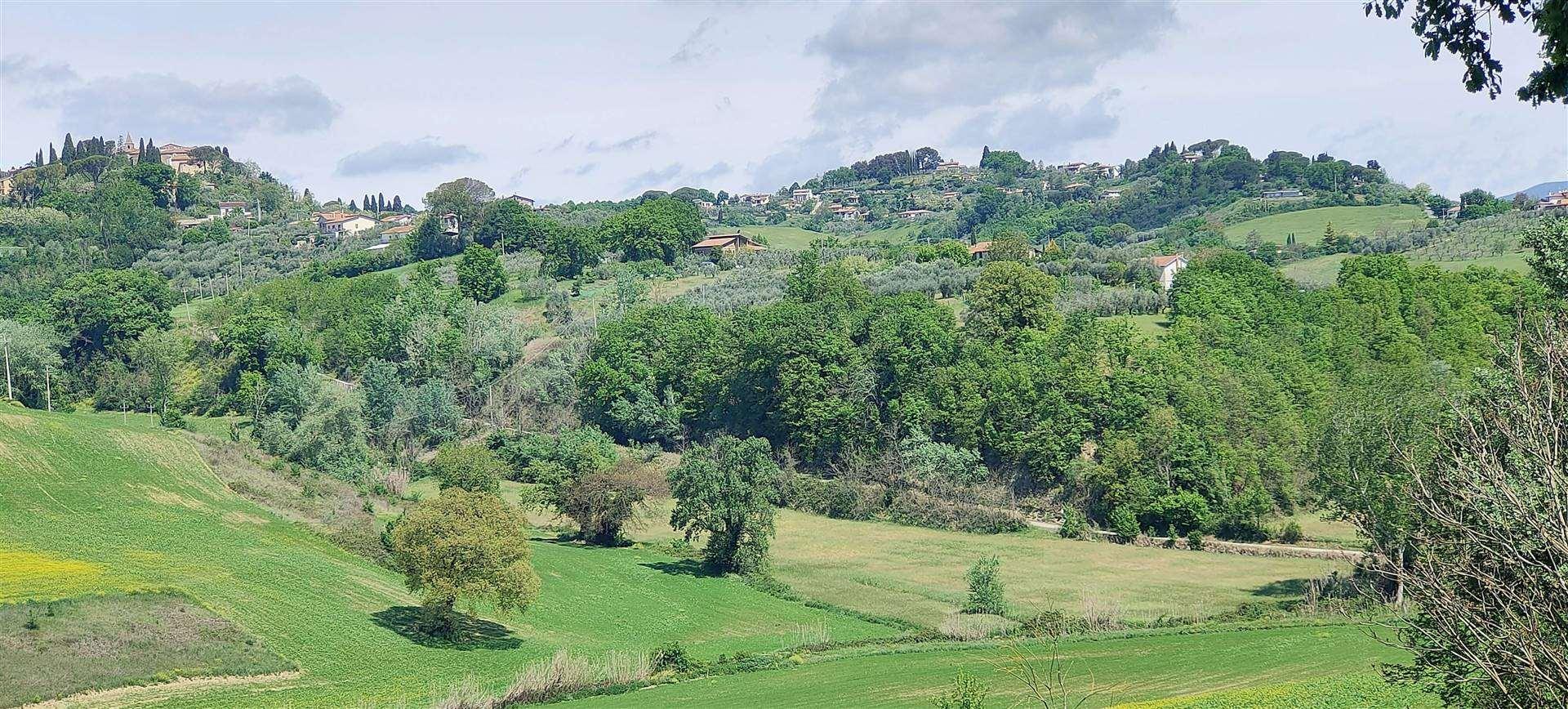 Terreno Agricolo in vendita a Collevecchio, 1 locali, prezzo € 55.000 | CambioCasa.it