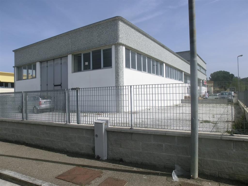Capannoni industriali pisa in vendita e in affitto cerco for Affitto capannone