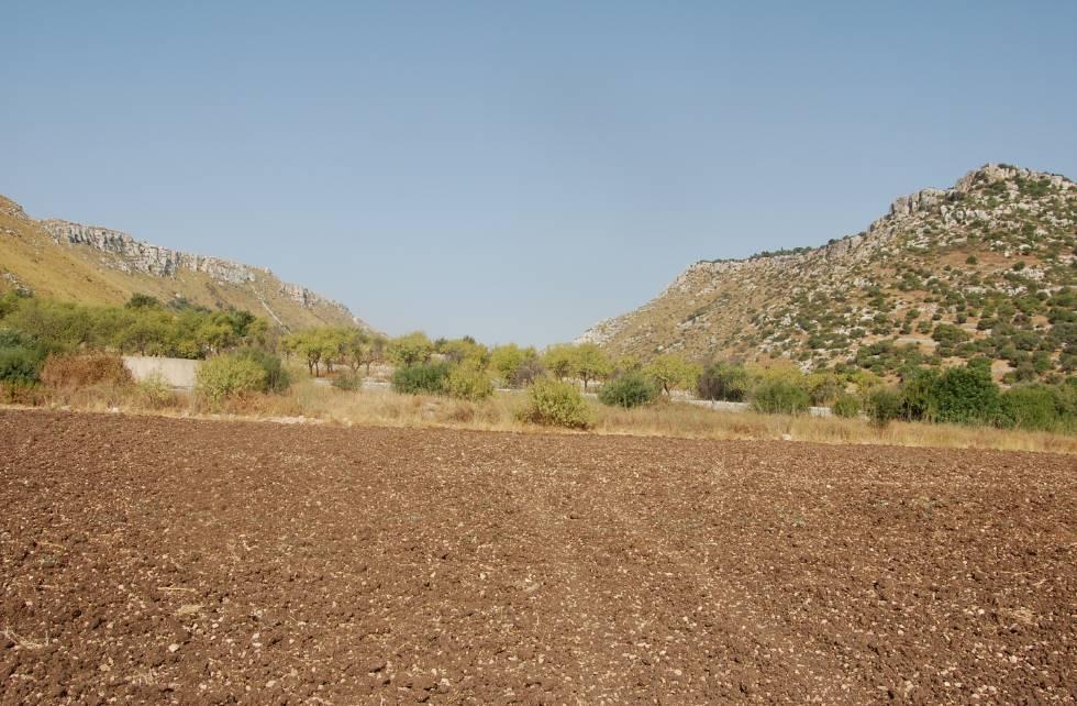 Vendita terreno agricolo luni scavi ortonovo piano - Diritto di passaggio su terreno agricolo ...
