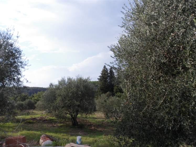 Rustici casaliFirenze - Rustico casale, San Martino Alla Palma, Scandicci, da ristrutturare