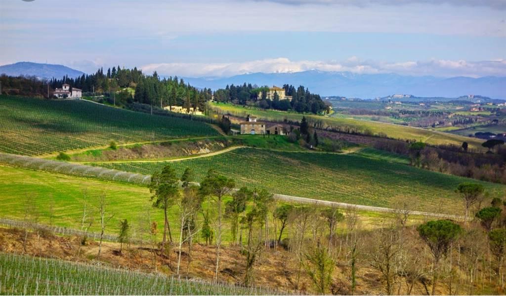Terreni agricoliFirenze - Terreno agricolo, Montespertoli