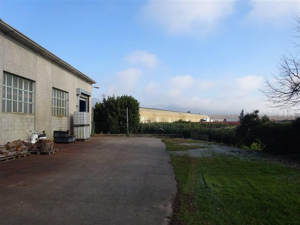 Capannoni industriali verbania in vendita e in affitto for Affitto capannone