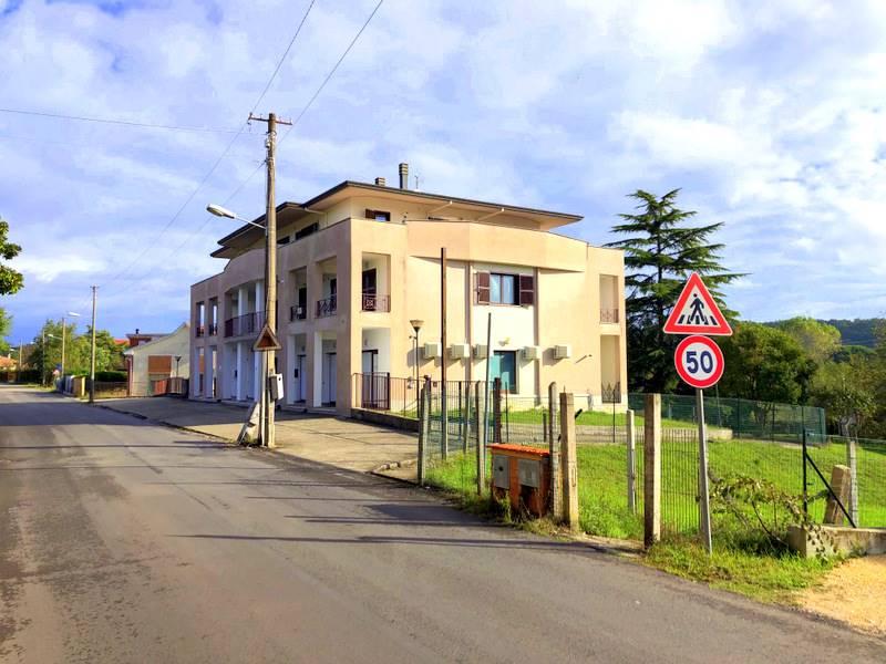 RIF. SCACCIA295