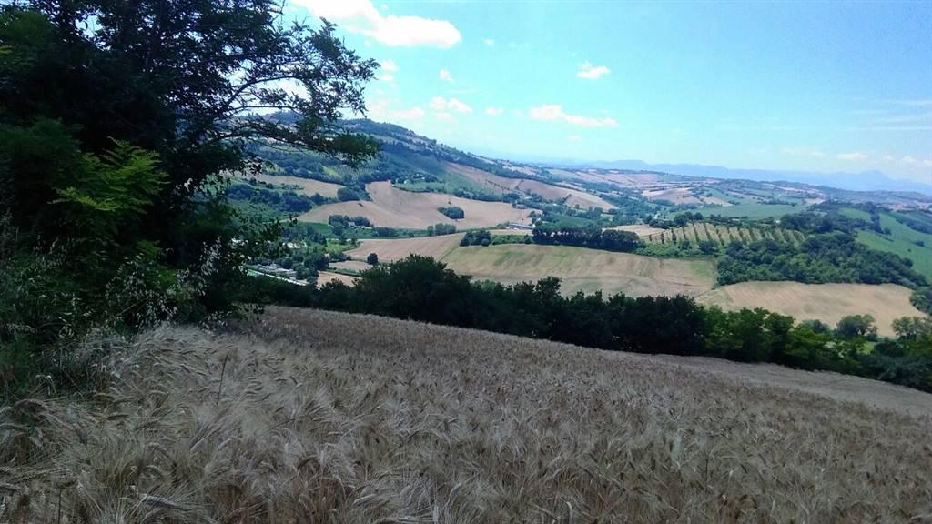 Terreno agricolo in Via Montegalluzzo Snc, Montesicuro, Ancona