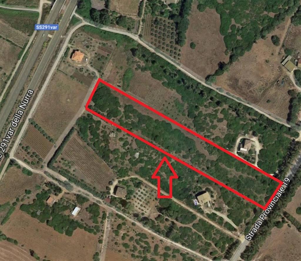 Terreno Agricolo in vendita a Olmedo, 9999 locali, Trattative riservate | PortaleAgenzieImmobiliari.it