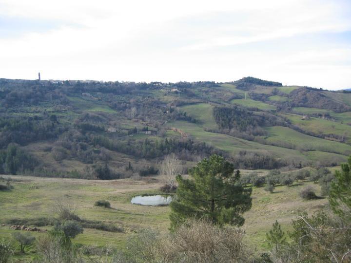 Azienda Agricola in vendita a Pomarance, 9999 locali, prezzo € 1.190.000 | CambioCasa.it
