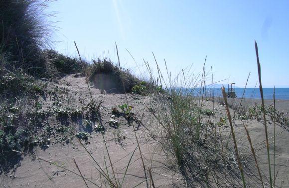 le dune e il mare