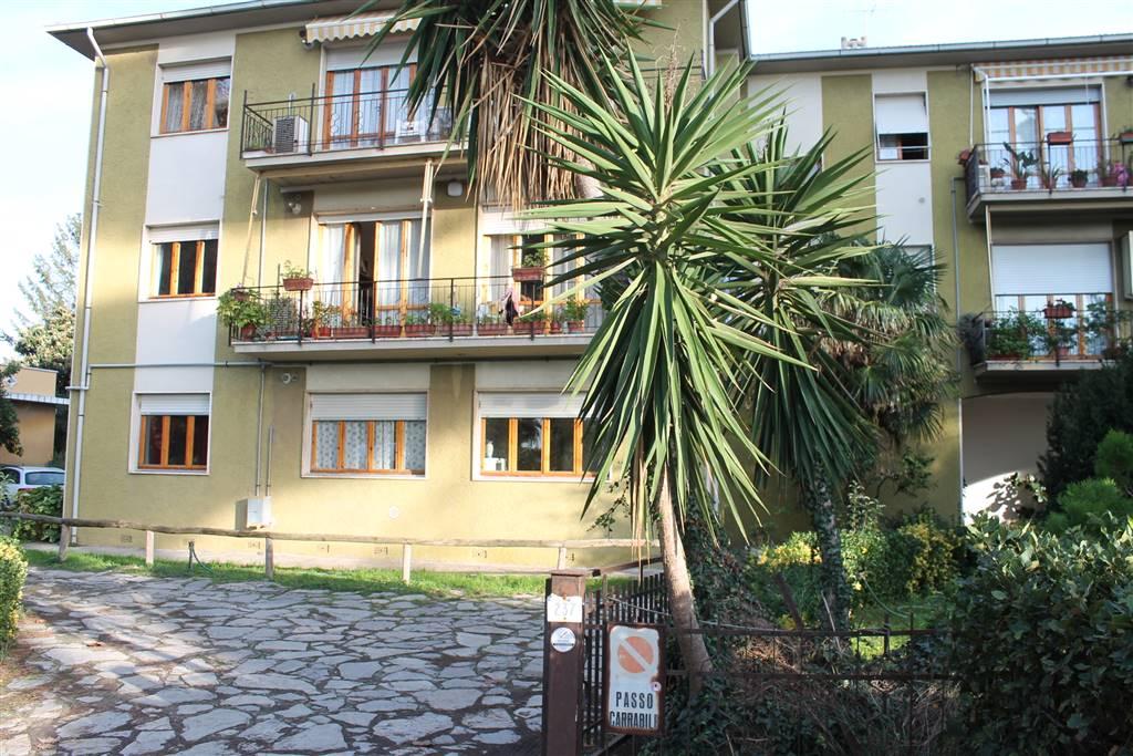 Appartamento in Via Aurelia Sud 237, Donoratico, Castagneto Carducci