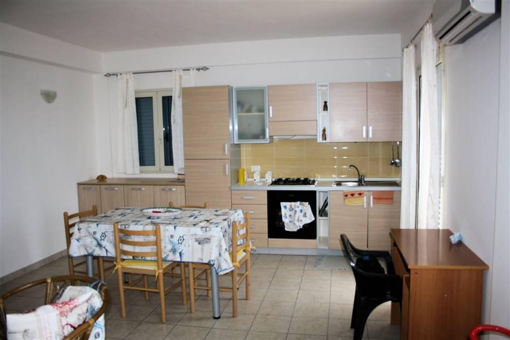 Vendesi appartamento seminuovo al 2° piano, a Casuzze, di circa 65 Mq calpestabili, composto da ingresso-soggiorno-cucina con annesso terrazzo, bagno,