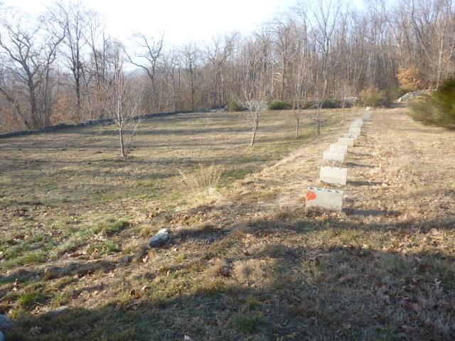Terreno agricoloaARONA