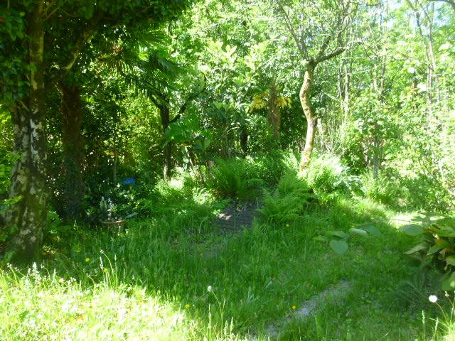 giardino nelle vicinanze