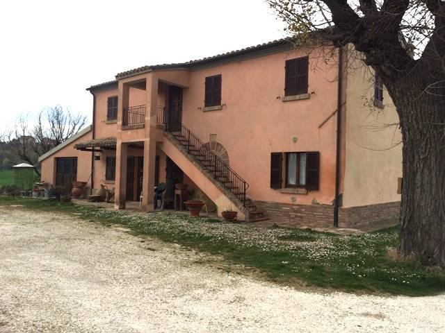 Colonica, San Costanzo, in ottime condizioni