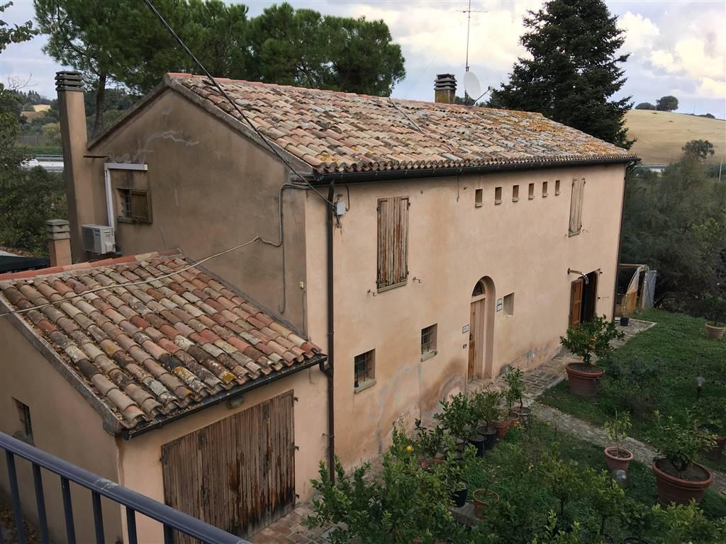 Colonica, Fano