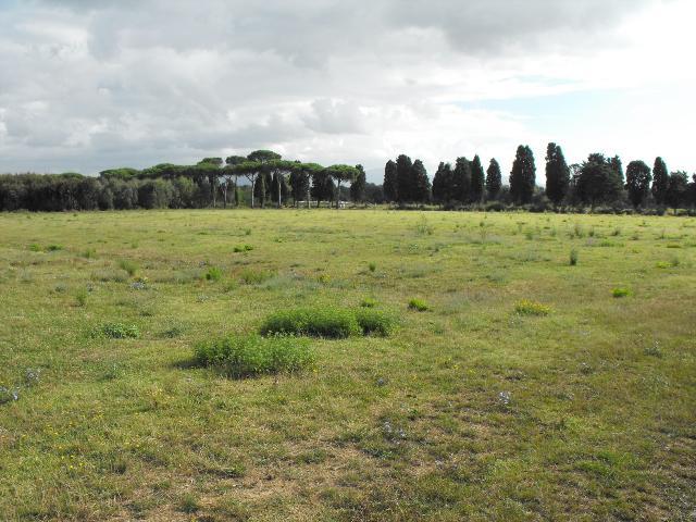 terreno edificabile residenziale in vendita a pisa - zona coltano