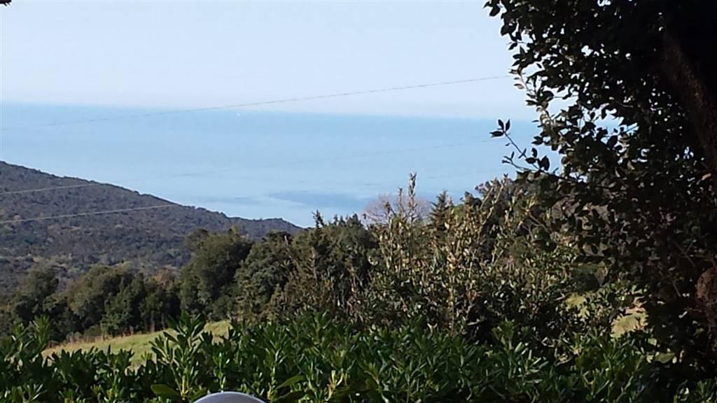 VILLINO VISTA MARE NIBBIAIA a 7 km dal mare villino unico livello libero sui tre lati con circa mq.150 di giardino vista mare. L'immobile in ottime