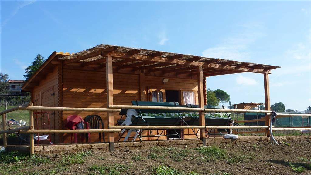 Terreno Agricolo in vendita a Borgo San Lorenzo, 9999 locali, zona Località: IMMEDIATE VICINANZE, prezzo € 32.000   CambioCasa.it