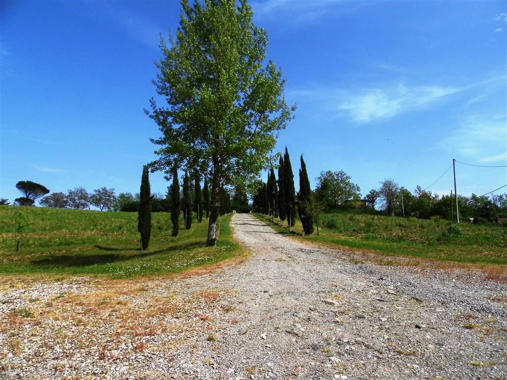 Agriturismo in vendita a Borgo San Lorenzo, 28 locali, zona Località: IMMEDIATE VICINANZE, prezzo € 950.000   CambioCasa.it
