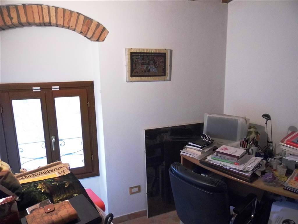 camerina/ studio