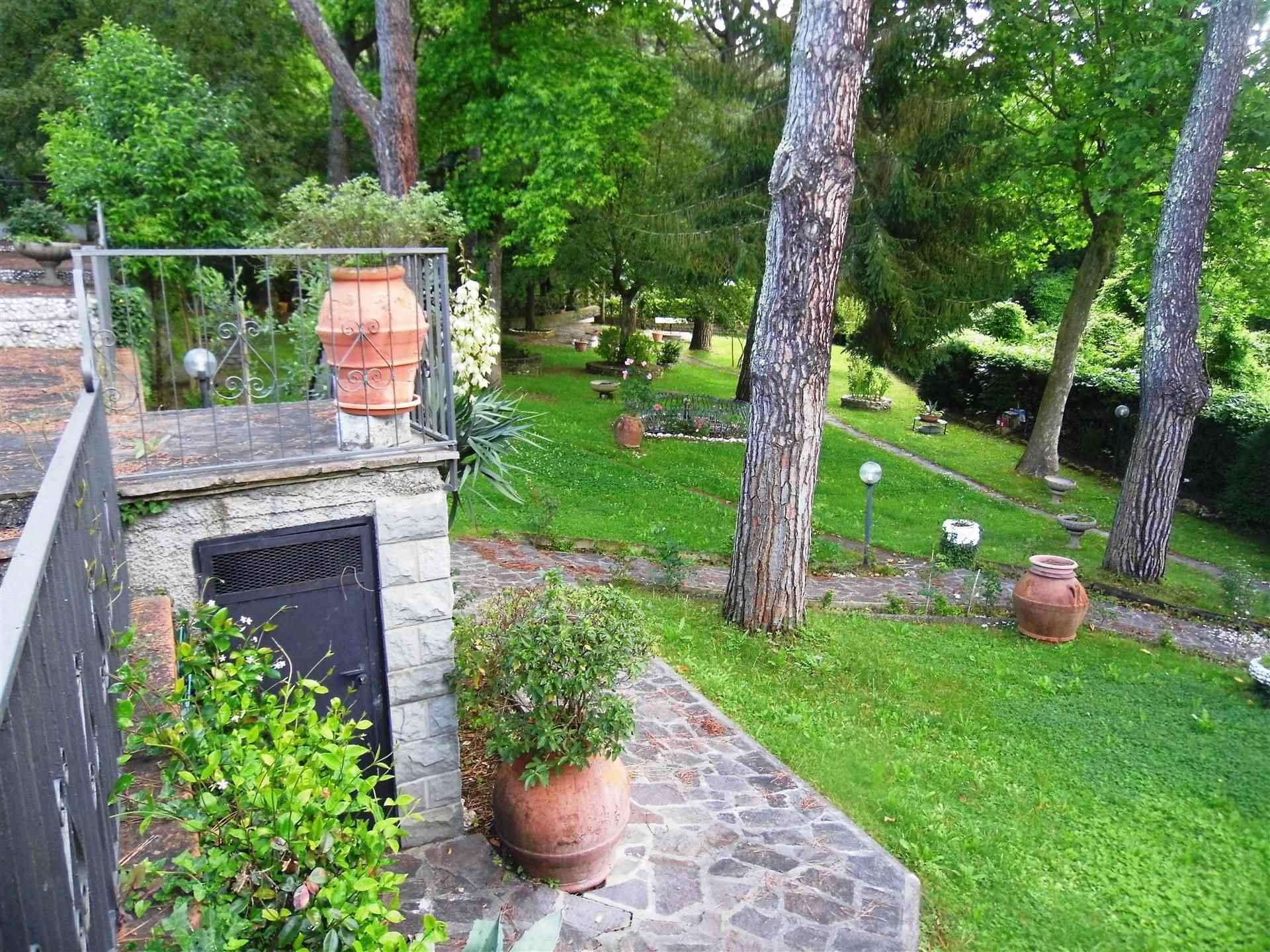 giardino con alberi di alto fusto