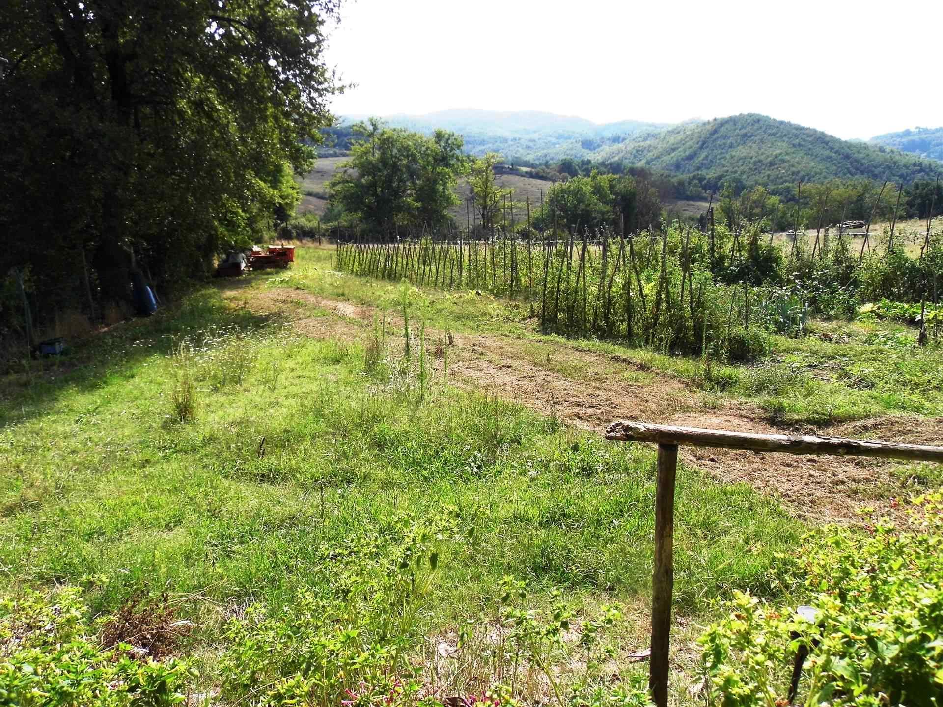 terreni di proprietà