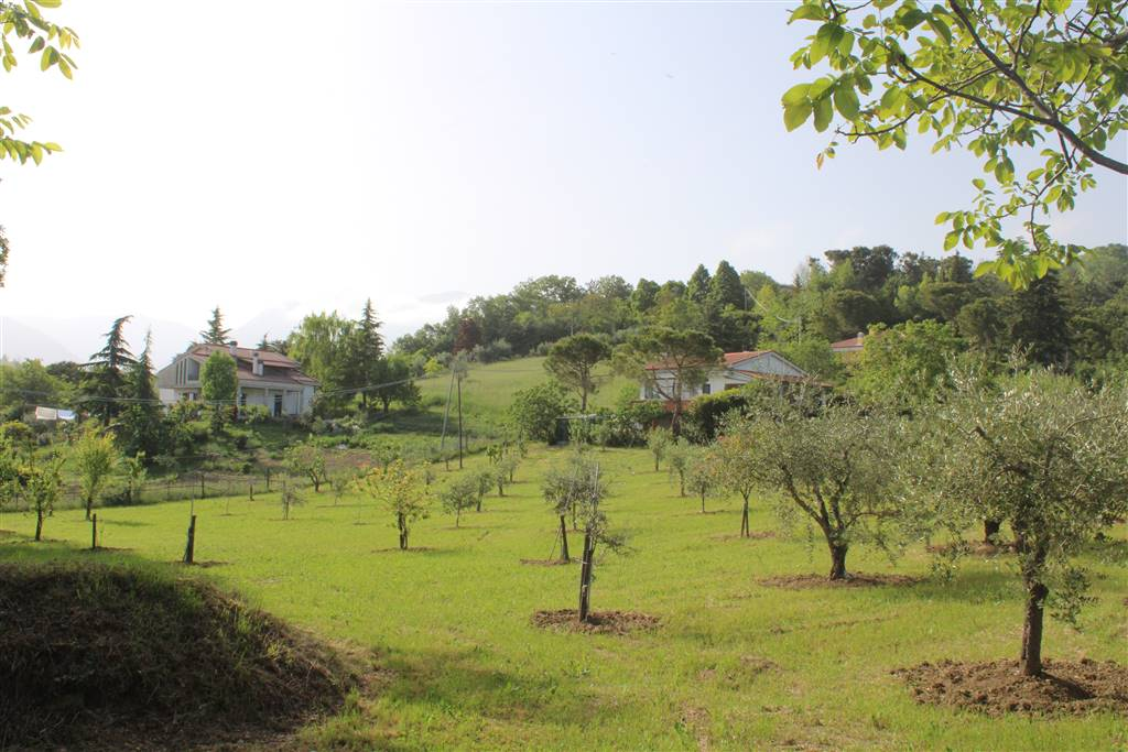 Farming plot of land in TERAMO