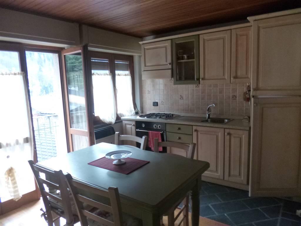 Appartamento in vendita a Branzi, 2 locali, prezzo € 47.000 | CambioCasa.it